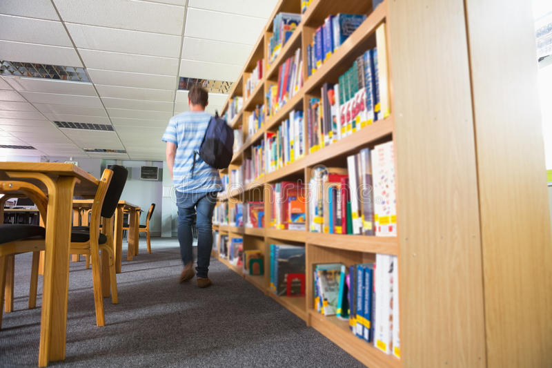 Student walking away in the library royalty free stock images