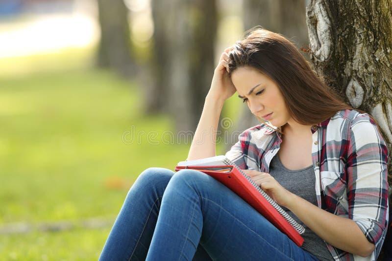 Studente attento che memorizza le note all'aperto fotografia stock libera da diritti