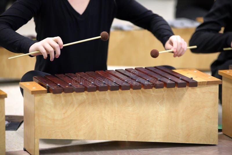 Studente che gioca xilofono diatonico con i magli fotografia stock