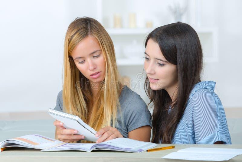 Studente che studia nel salone a casa immagine stock libera da diritti