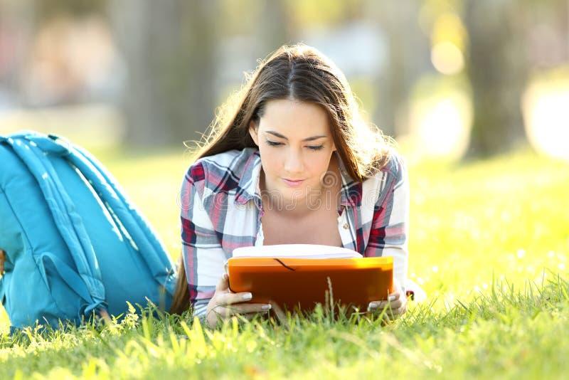 Studente concentrato che impara memorizzando le note immagine stock libera da diritti