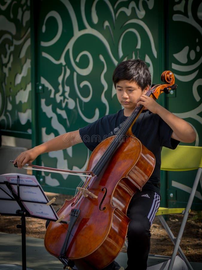 Studente del violino che gioca al mercato degli agricoltori di Davis fotografia stock libera da diritti
