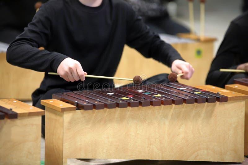Studente Diatonic Xylophone con i magli fotografia stock