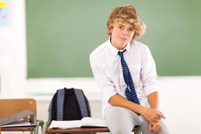 Studente teenager del ragazzo immagini stock libere da diritti
