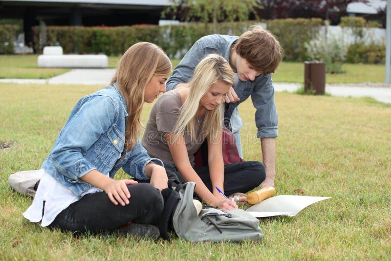 Studenten, die auf dem Gras studieren lizenzfreie stockfotografie