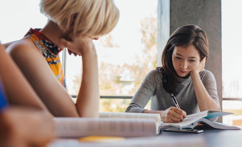 Studenten die voor definitieve examens voorbereidingen treffen royalty-vrije stock afbeeldingen