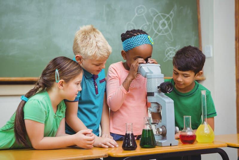 Studenten die wetenschapsbekers en een microscoop gebruiken royalty-vrije stock afbeeldingen