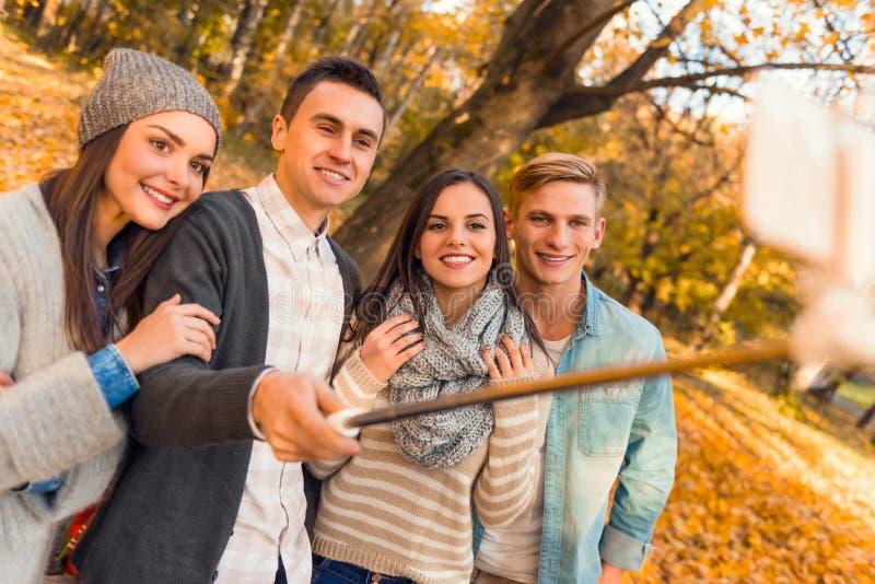 Studenten im Herbstpark stockfotos