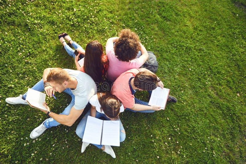 Studenten studieren Sitzen auf grünem Gras in einem Park im Sommerfrühling stockfoto