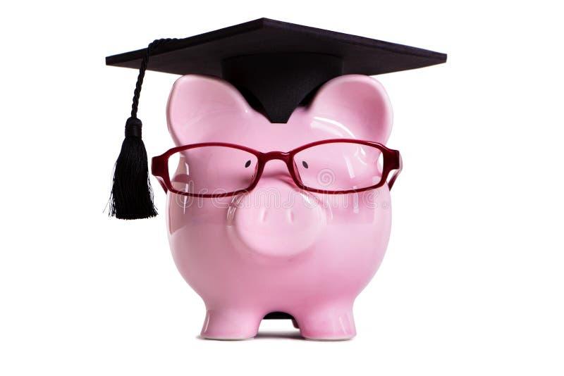 Studentencollegeabsolvent Sparschwein lokalisiert auf weißem Hintergrund lizenzfreie stockfotos