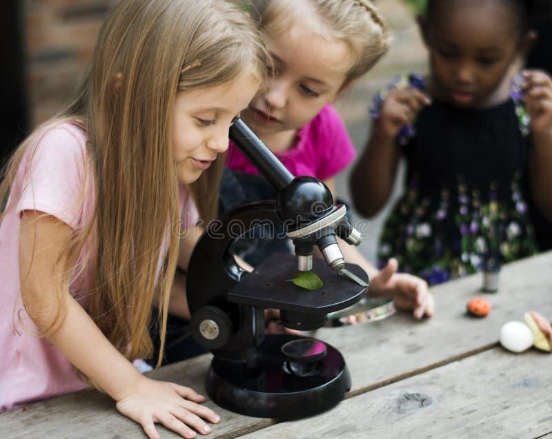 Studenter använder mikroskopet för utbildning royaltyfri fotografi