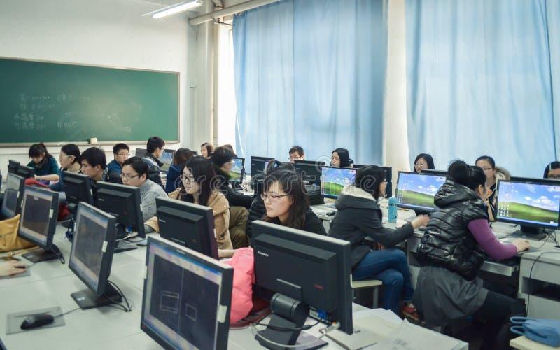 Studenter i datorgruppen royaltyfri fotografi