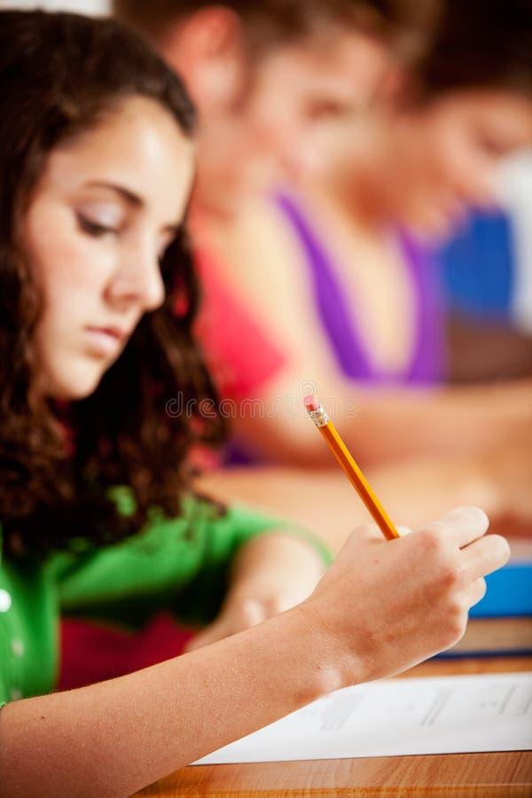 Studenter: Kvinnlig student Concentrating On Schoolwork arkivbild
