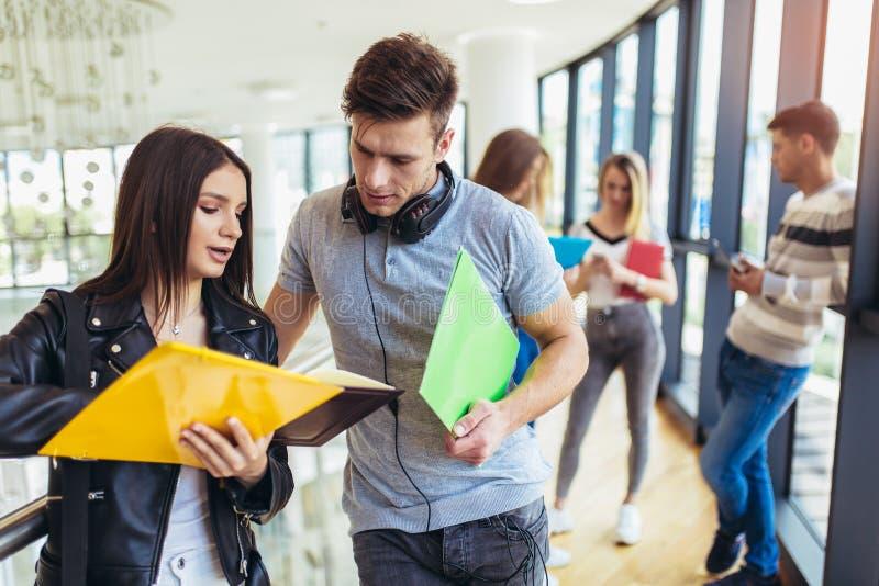 Studenter som tillsammans studerar i korridoren av universitetet royaltyfri fotografi