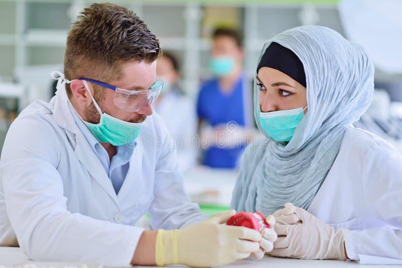 Studenti arabi con hijab mentre lavorando alla protesi dentaria, denti falsi immagini stock libere da diritti