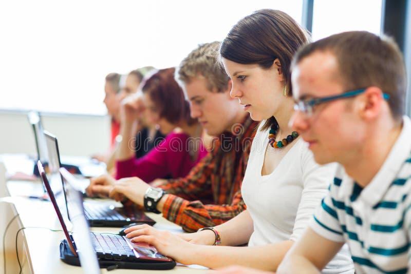 Studenti di college che si siedono in un'aula fotografia stock libera da diritti