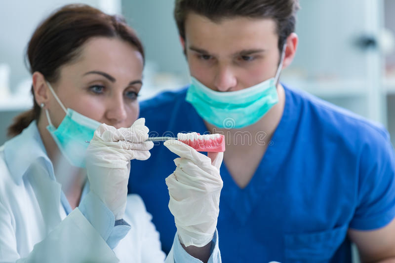 Students with dental prosthesis, dentures, prosthetics work. Dental prosthesis, dentures, prosthetics work. Prosthetics hands while working on the denture stock images