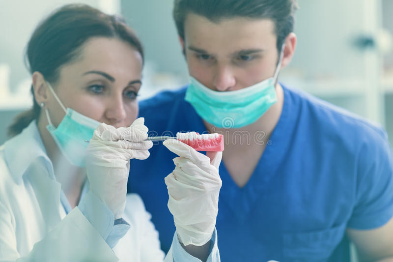 Students with dental prosthesis, dentures, prosthetics work. Dental prosthesis, dentures, prosthetics work. Prosthetics hands while working on the denture royalty free stock image