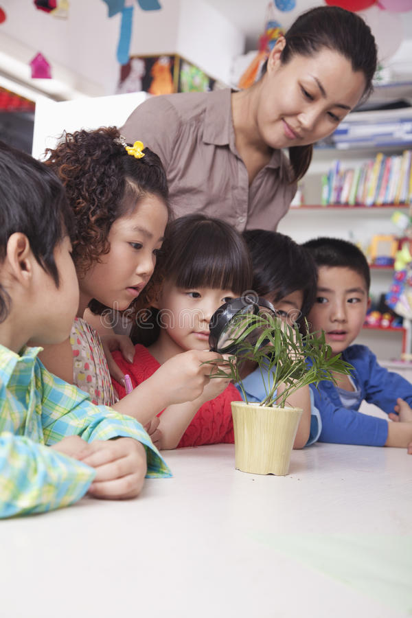 Free Students Looking At Plant With A Magnifying Glass Royalty Free Stock Photos - 33372988