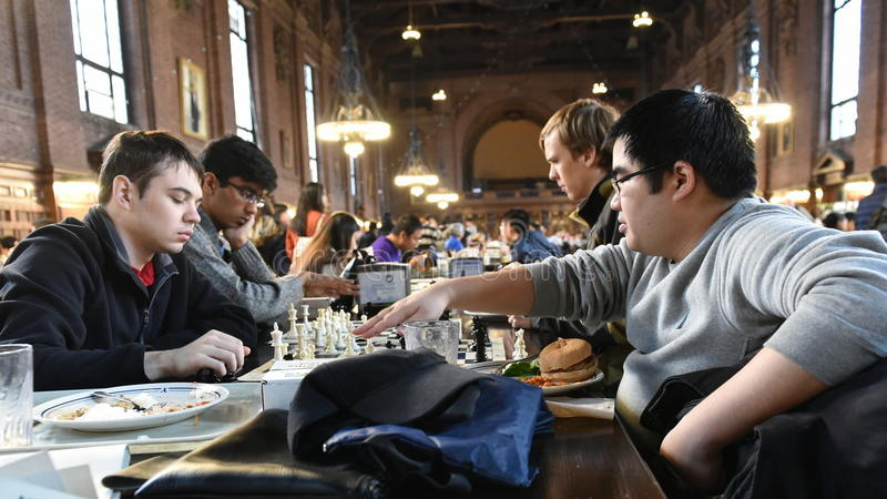 Students Play Chess stock image