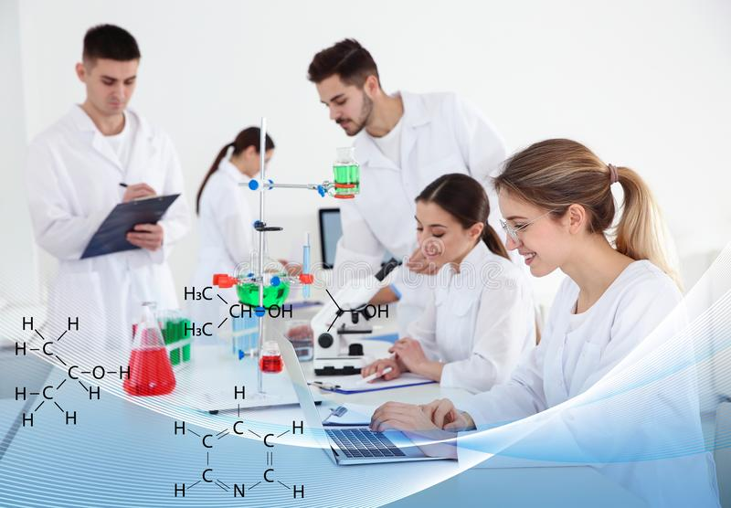 Students working in scientific laboratory. Experimental chemistry. Students working in modern scientific laboratory. Experimental chemistry stock image