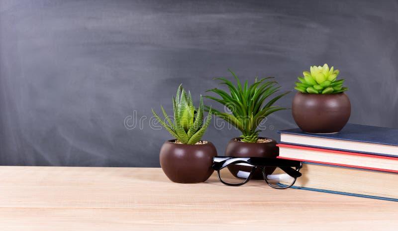 Studentskrivbord med gröna växter och böcker med tomt blackboar arkivfoton