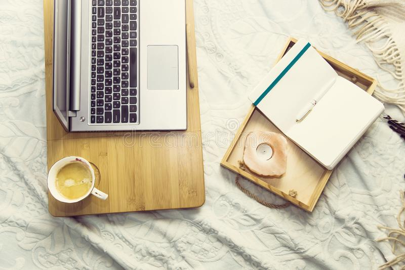 Studie eller arbete hemma på soffan royaltyfria bilder
