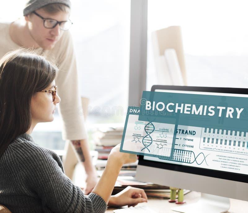 Studieren der Wissenschaft, die Biochemie-Laborkonzept lernt lizenzfreie stockbilder