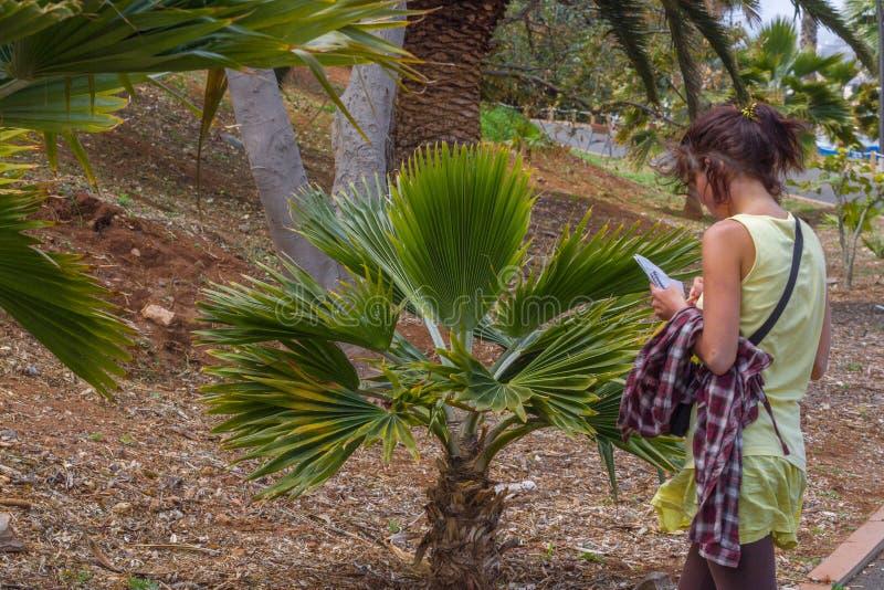 Studing Anlagen der Frau im botanischen Garten im tropischen Teil stockbild