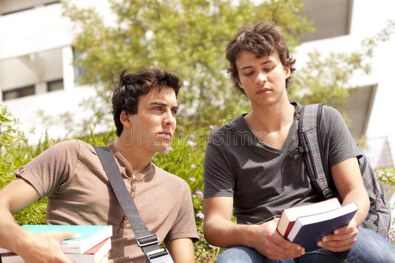 Download Studing at the school stock image. Image of green, happiness - 16110935