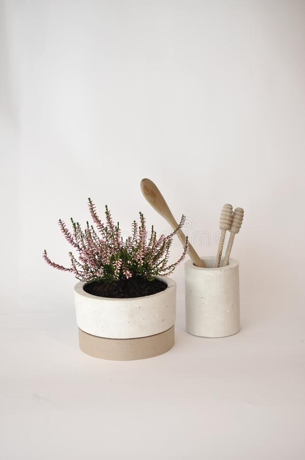 Studio concreto del vaso della piantatrice fotografia stock libera da diritti