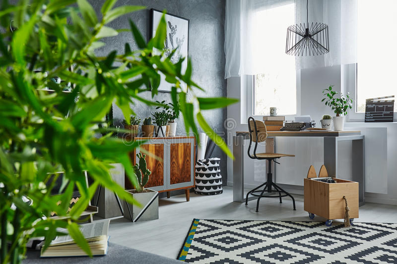 Studio flat with plants. Functional studio flat with plants and desk stock photos
