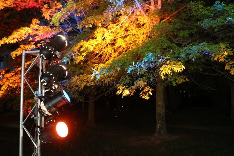 Festive Lights at the Nara festival Australia stock images