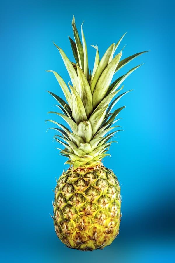 Pineapple On Blue Underground Stock Photography