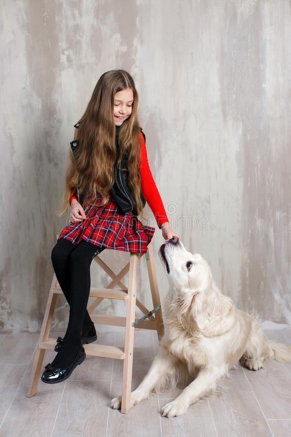 Free Studio Portrait Of A Girl With A Dog On A Gray Background Royalty Free Stock Images - 119564149