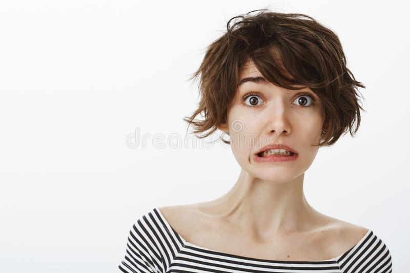 Studio shot of awkward cute european female student with stylish hairstyle, making mistake and blameful face, being. Sorry, clenching teeth while standing royalty free stock photos