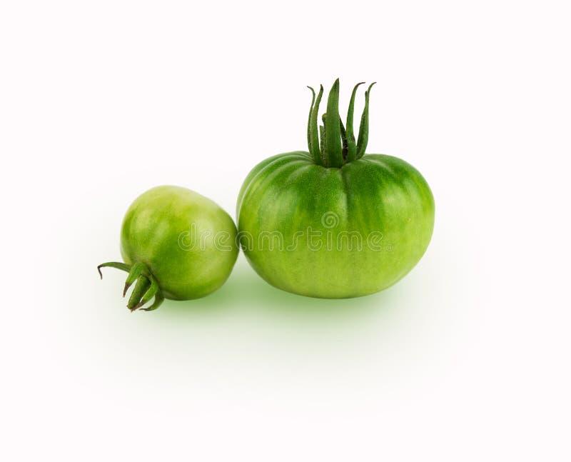 Studio shot of green tomato stock images