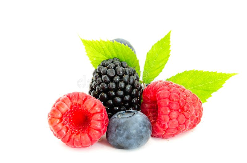 Studio shot mixed berries isolated on white royalty free stock image