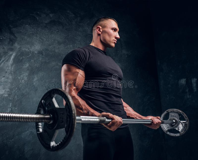 Muscular attractive bodybuilder lifting a barbell stock photography