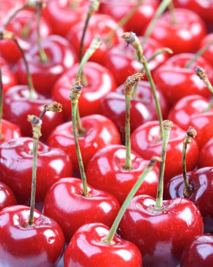 Free Studio Shot Of Cherries - Background Stock Photos - 51669493