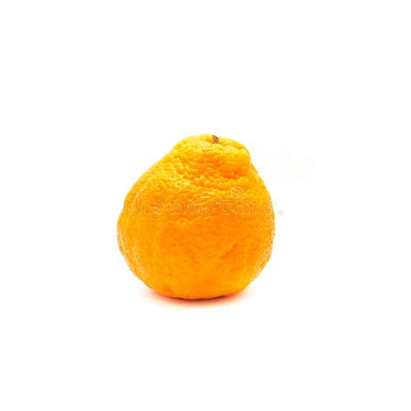 One sumo. Studio shot of one large ripe, easy to peel Sumo Orange isolated on white. A Cross Between Mandarin and California Navel Orange, developed in Japan and royalty free stock images