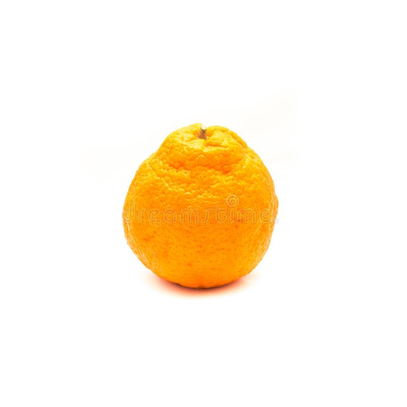 One sumo. Studio shot of one large ripe, easy to peel Sumo Orange isolated on white. A Cross Between Mandarin and California Navel Orange, developed in Japan and stock photo