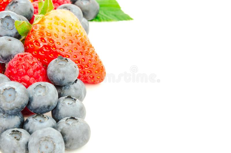 Studio shot pile of leaves and organic strawberries, blueberries and raspberries isolated royalty free stock images