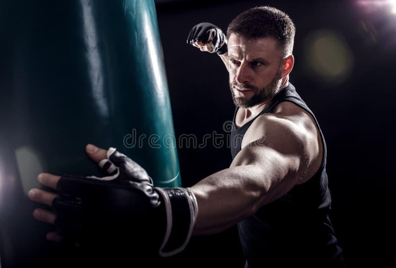 Studio strzelający męski bokser obrazy stock