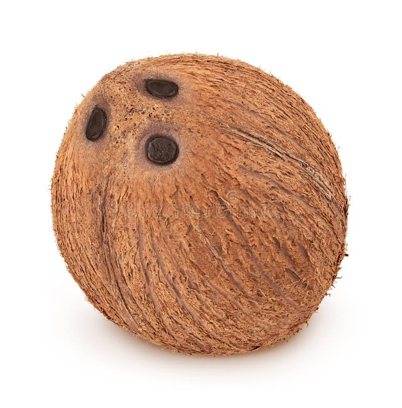Studio tiré de la noix de coco entière d'isolement sur un fond blanc image libre de droits