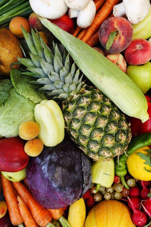Studiofoto av olika grönsaker royaltyfria bilder