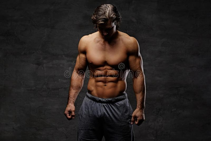 Studioporträt des hemdlosen muskulösen Mannes lizenzfreie stockfotografie
