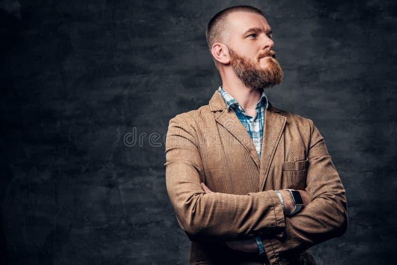 Studioportret van roodharige gebaard mannetje royalty-vrije stock afbeelding