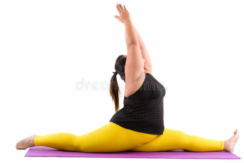 Studioskott av den unga feta asiatiska kvinnan som spottar hennes ben medan rea fotografering för bildbyråer