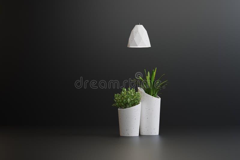 Studioskott av lampor och växter i vaser vektor illustrationer
